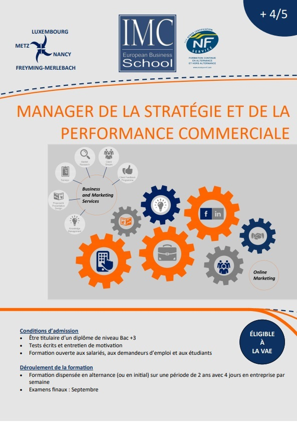 Manager de la stratégie et de la performane commerciale
