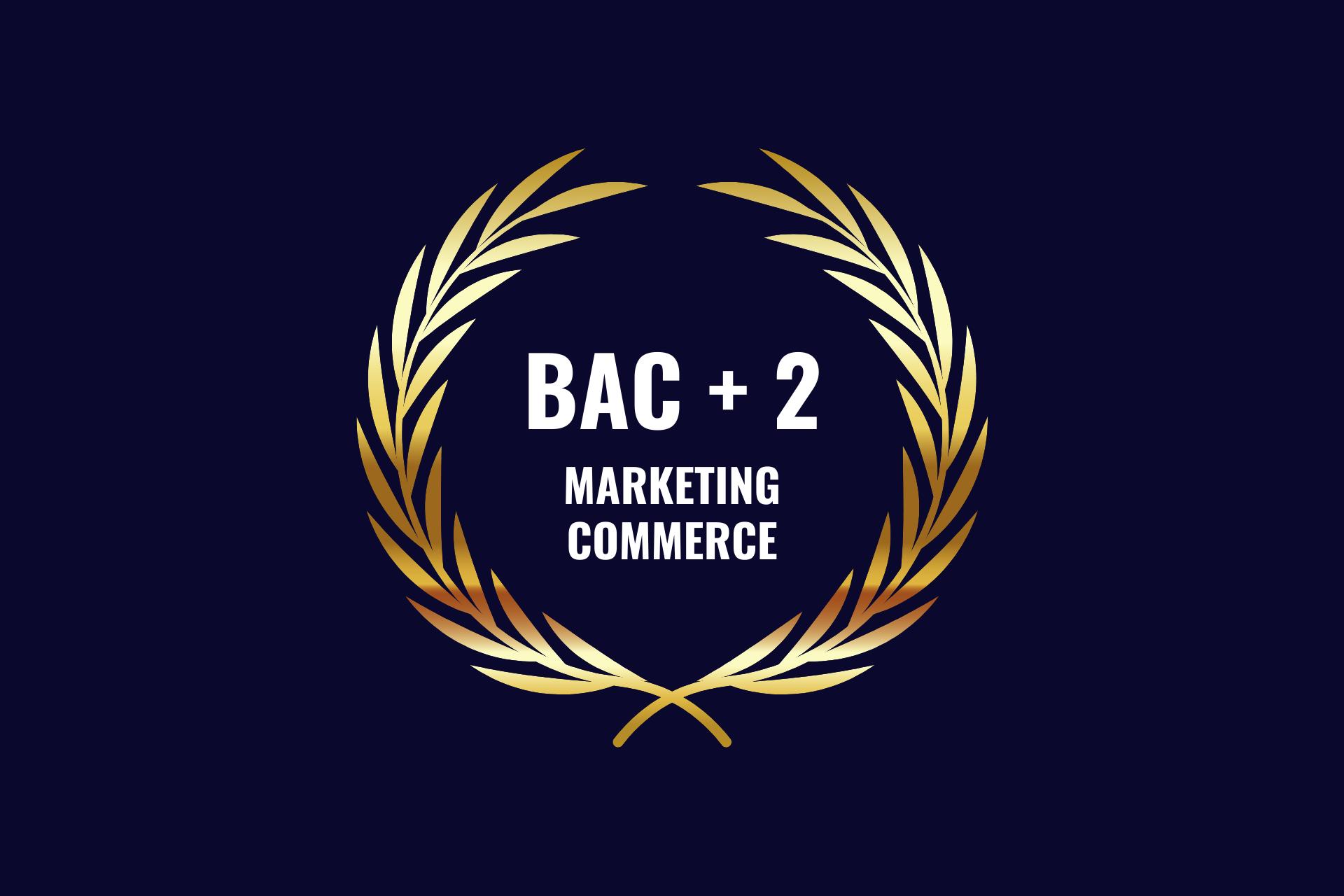 BTS MCO Management Commercial Opérationnel